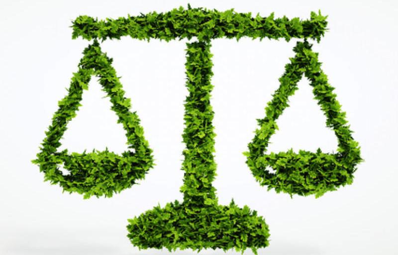 Je soutiens l'inscription de l'environnement à l'article 1er de la Constitution